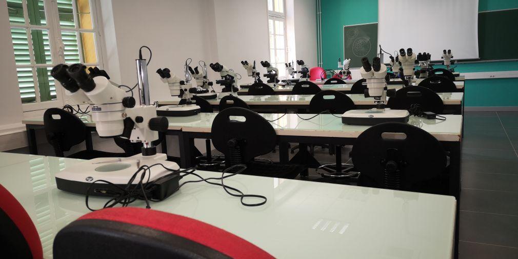 Ouverture des inscriptions aux stages inter-universitaires d'été (6 ECTS) de l'Institut de la Mer de Villefranche