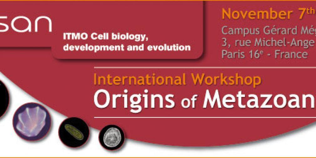 """""""Origins of Metazoans"""" Meeting"""