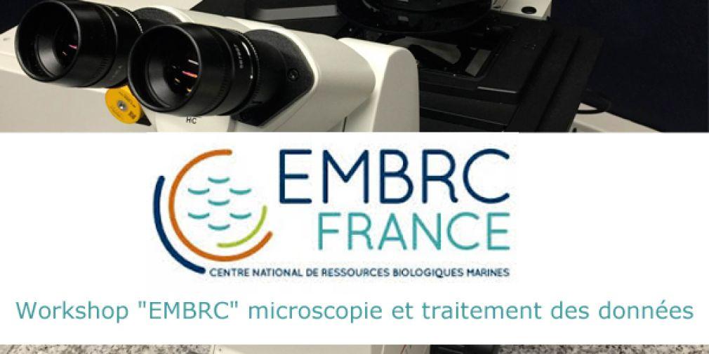 """Workshop """"EMBRC"""" microscopie et traitement des données"""