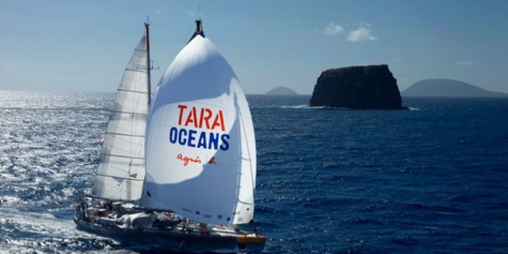 Tara Ocean : a Human, Planktonic and Scientific Adventure