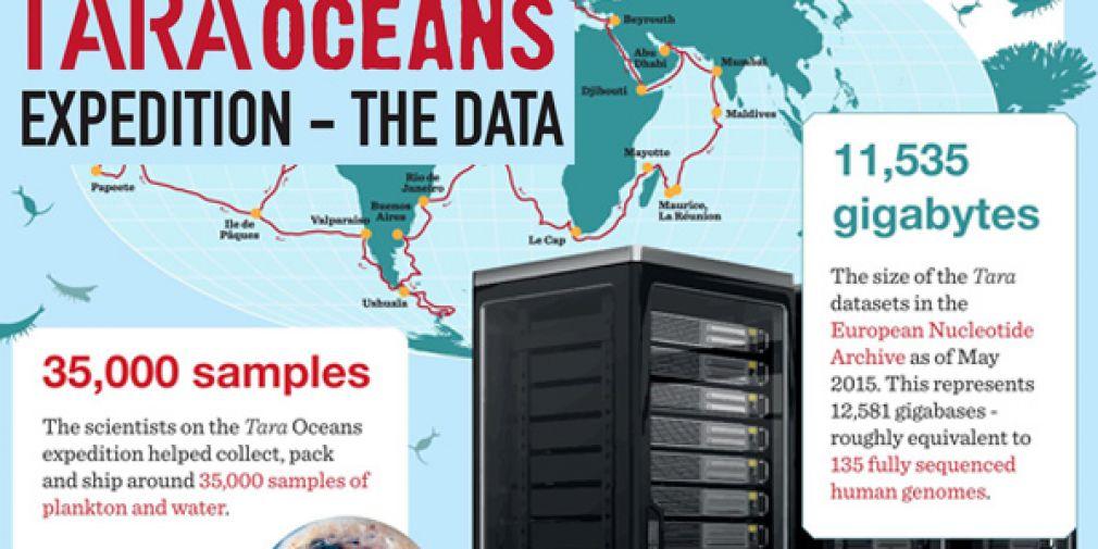 La Génomique du plancton et Tara Oceans