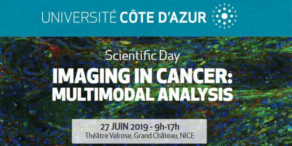 Imaging in Cancer: Multimodal Analysis