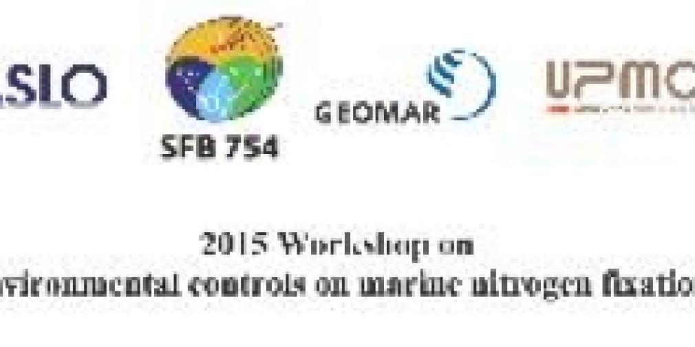 International Workshop on Marine Nitrogen Fixation