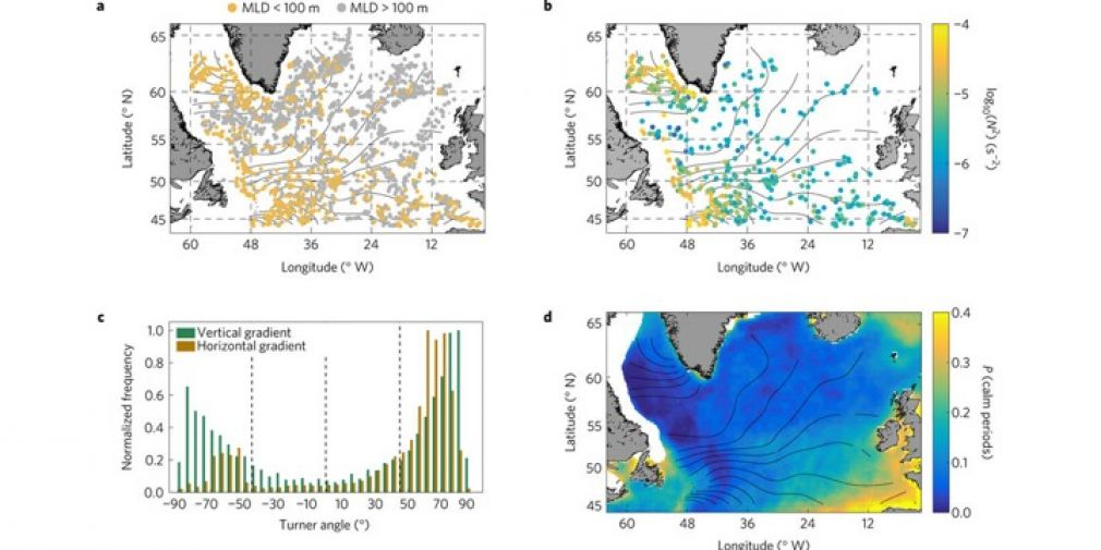 Unexpected winter phytoplankton blooms in the North Atlantic subpolar gyre : a Nature Geoscience paper