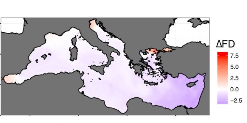 Comment la diversité des copépodes répondra-t-elle aux changements climatiques en Mer Méditerranée ?