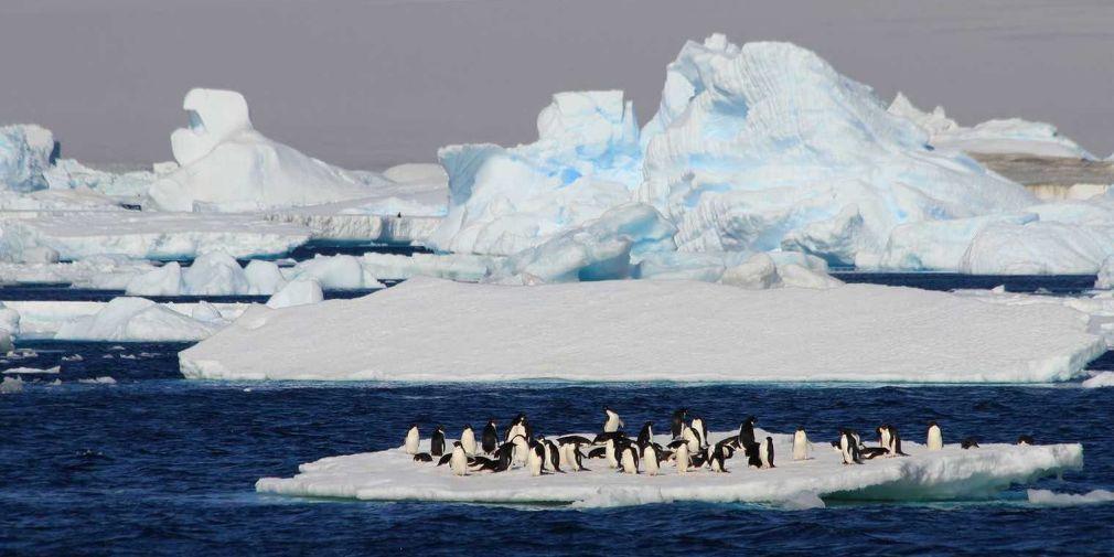 L'Océan Austral, clé de voûte du climat - Article dans l'EXPRESS