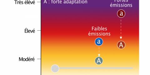 Estimation du risque global du changement climatique anthropique