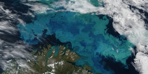 La couleur de l'océan met-elle en lumière le réchauffement climatique ?