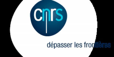 Appel à projets CNRS-Momentum