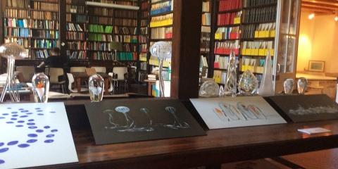 Le patrimoine de la Bibliothèque de l'OOV mis en valeur