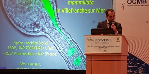 "meeting ""Frontiers in Marine Biotechnologies"""