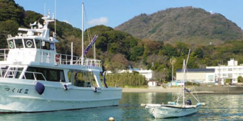 Collaborations with Shimoda Marine Resaearch Center in Japan