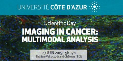 Imaging in Cancer: Multimodal Analysis