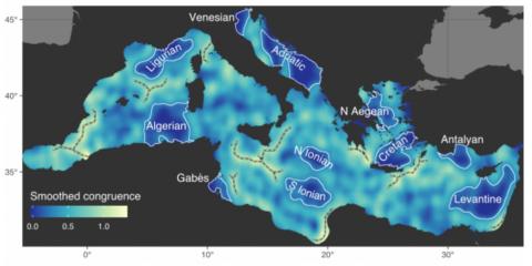 Une synthèse des différentes écorégions de la mer Méditerranée