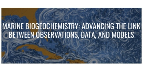 MARINE BIOGEOCHEMISTRY: ADVANCING THE LINK BETWEEN OBSERVATIONS, DATA, AND MODELS